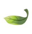 icon leaf vector image