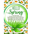 hello spring floral frame poster with daisy flower vector image
