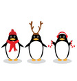 penguin fun vector image