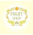 Fruit shop Vintage logo vector image