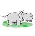 cartoon hippopotamus vector image