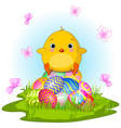 yellow easter chick vector image