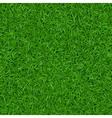 Green grass seamless pattern 1 vector image
