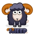 cute cartoon square black Sheep vector image