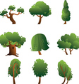 Set of trees - summer vector image vector image