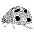 Ladybird coloring for adults vector image