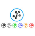coffee tree rounded icon vector image