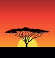 africa sunset vector image
