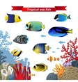 Coral reef fishes vector image