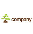 bonsai tree care logo vector image vector image