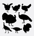Turkey cock bird poultry animal silhouette vector image