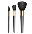 make-up brushes vector image