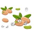 Smiling happy cartoon pistachio nut vector image vector image