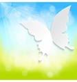 butterfly on spring background vector image
