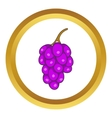 Bunch of wine grapes icon vector image