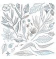Tropical Flowers and Leaves Set vector image