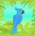 blue macaw parrot flat design vector image