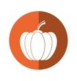 Pumpkin harvest bittersweet vegetable icon orange vector image