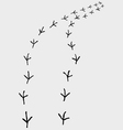 trail of birds vector image