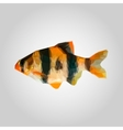 The fish icon Seafood symbol vector image