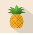 Pineapple Flat Design vector image