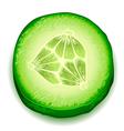 Fresh cucumber slice isolated on white background vector image