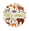 set of forest animals vector image