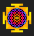 colored flower of life yantra vector image