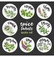 Spices and herbs labels Colored herbal set vector image