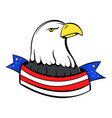 bald eagle with usa flag icon cartoon vector image
