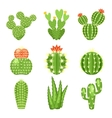 icon set of colored cactus and succulent vector image