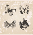 Grunge butterflies silhouettes vector image