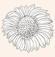 Sunflower Drawing vector image
