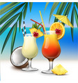 tropical cocktails tequila sunrise and pina colada vector image