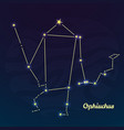 ophiuchus constellation vector image