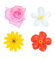 four flowers with drops set vector image