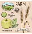 farm emblem vector image