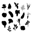 vegetables icons set black silhouettes vector image