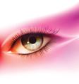 Realistic human eye vector image vector image