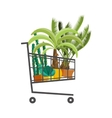 Florist shopShopping cart with plantsFlower vector image