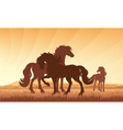 Horses on field on sunset background vector image