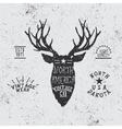 Vintage label with deer head vector image