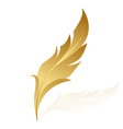 gold feather vector image vector image