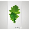 background with oak leaves vector image