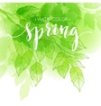 Watercolor background with green leaves vector image