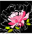 decorative background with peony flower vector image vector image