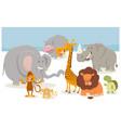 safari cartoon animal characters vector image