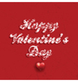 Grunge Valentines Day background vector image vector image