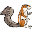 Xerus animal cartoon vector image