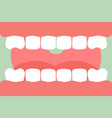 open mouth with healthy teeth and tongue vector image
